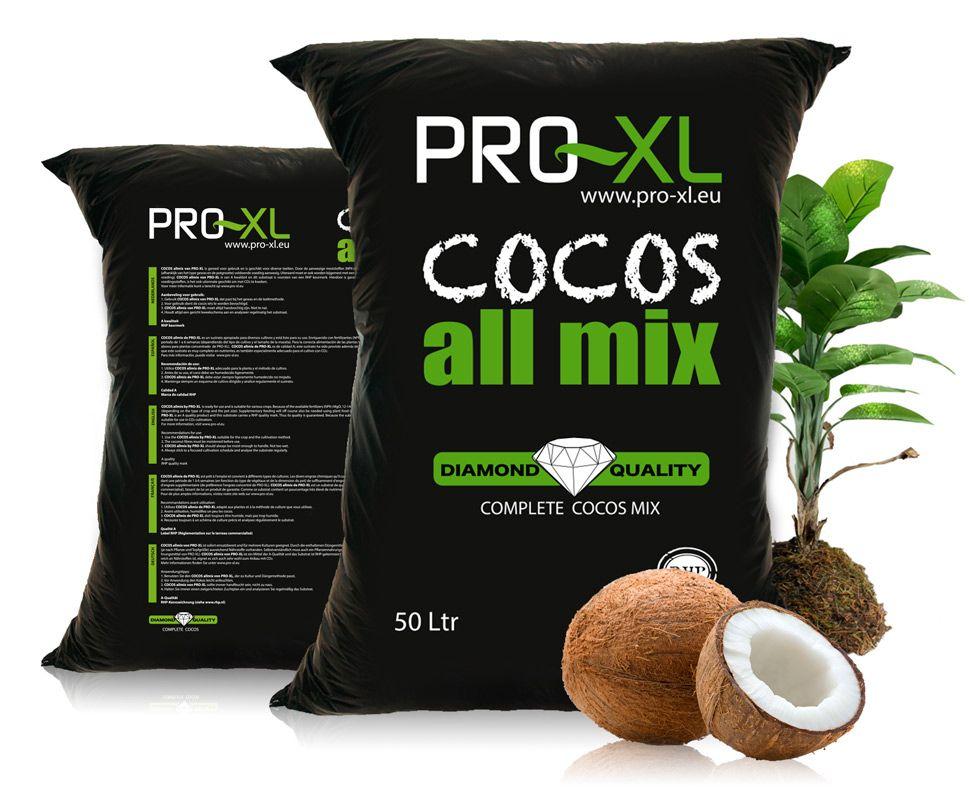 cocos-header
