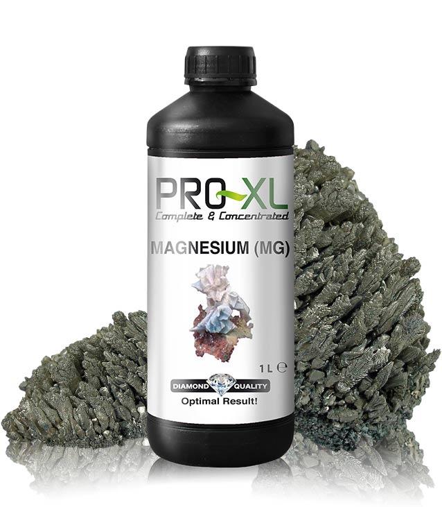 header-magnesio